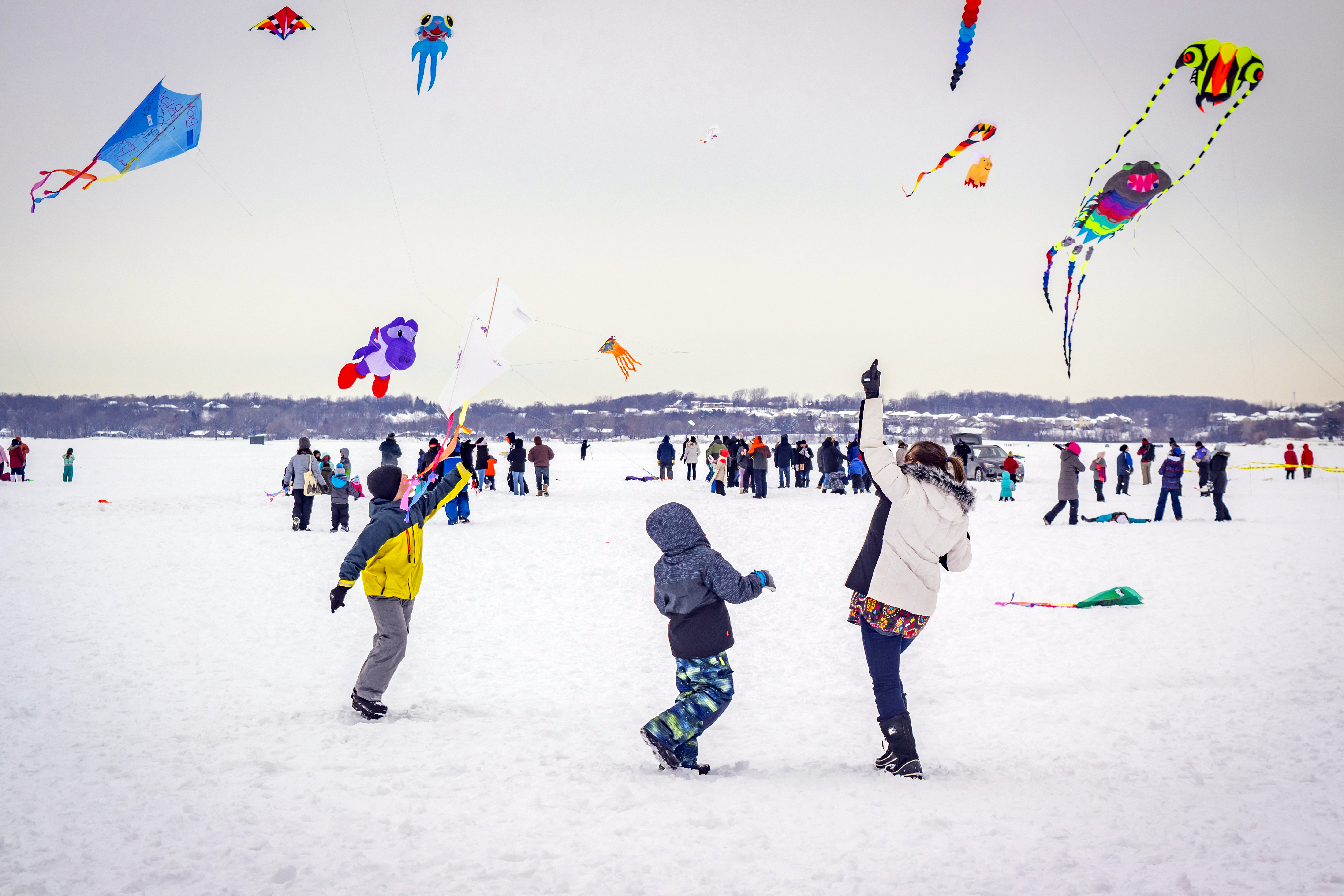Kites on Ice Festival - Build-a-Kite workshop - fly your own kite!