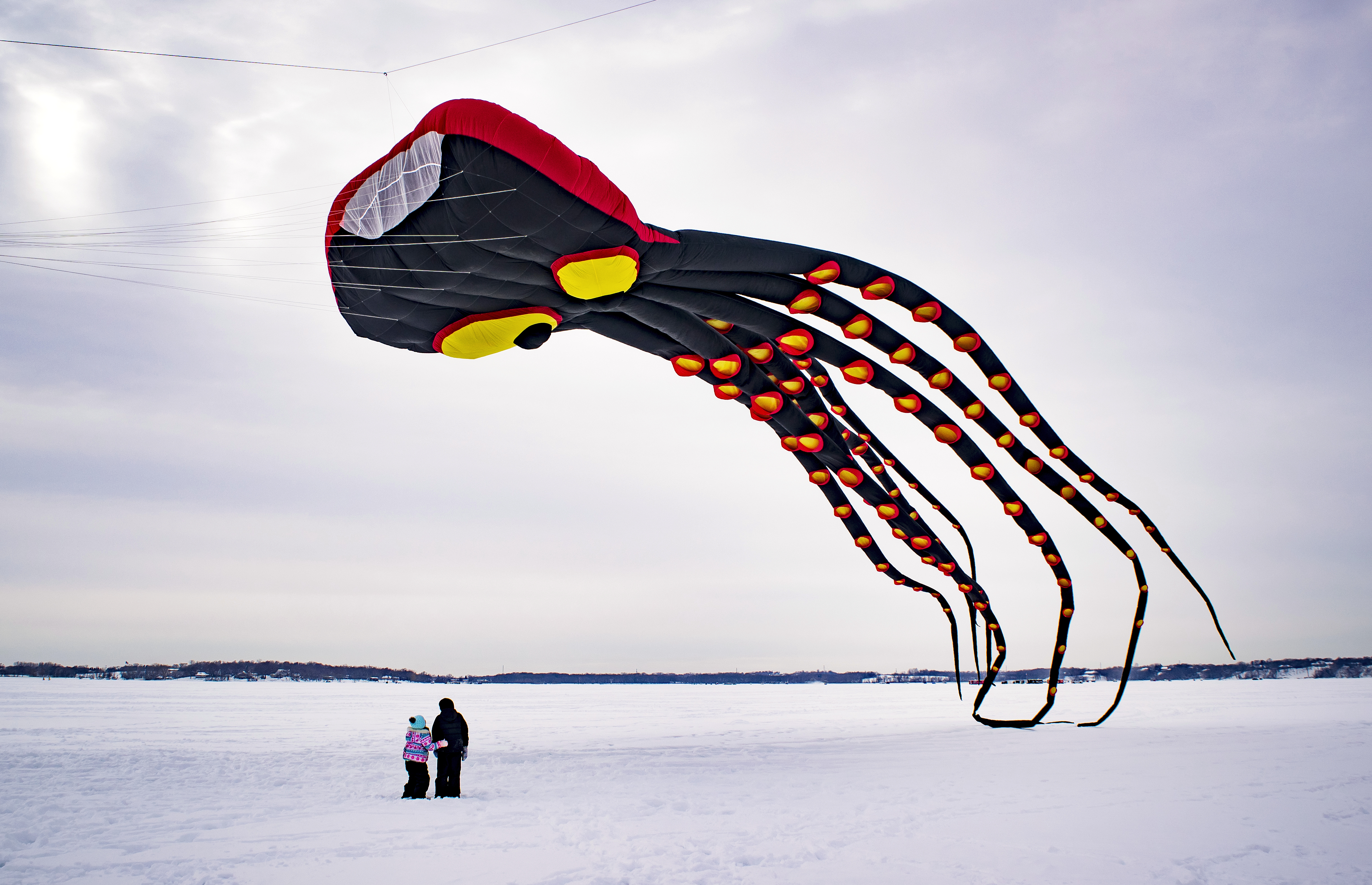 Kites on Ice Festival - Show Kites the size of a basketball court